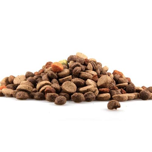 Dog Foods Jfrtrades